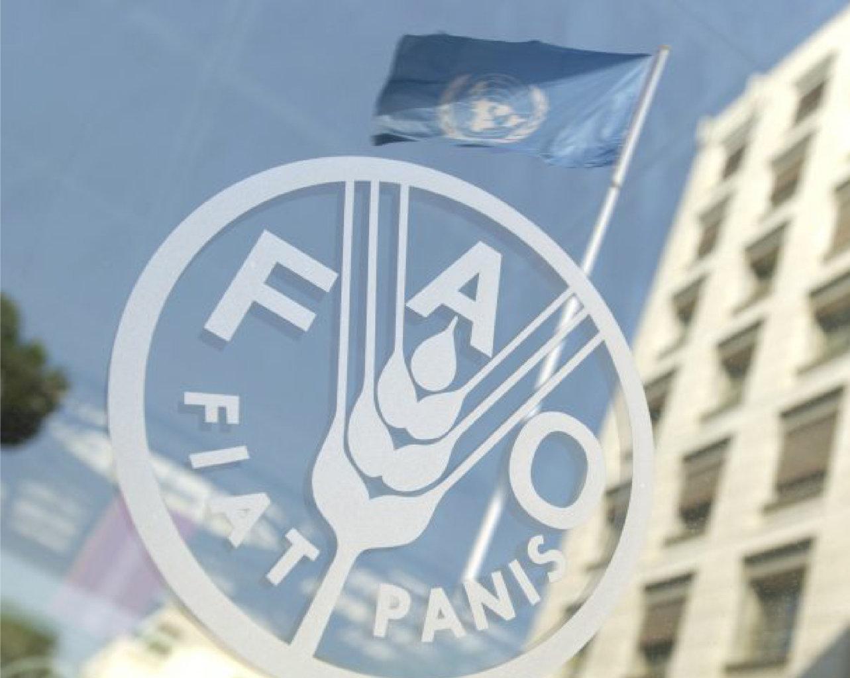 Convenzione Unisalute FAO